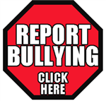 Bullying Report